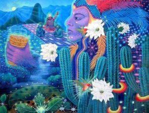 San Pedro Cactus Vision